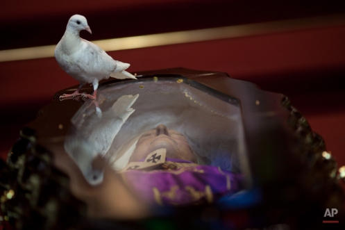 A dove perches on the glass top coffin of Brazilian Cardinal Eugenio Sales, during his funeral in Rio de Janeiro, Brazil, Tuesday, July 10, 2012. Sales, Archbishop Emeritus of Rio de Janeiro, provided shelter to thousands of opponents of the military regime that once ruled Brazil and to political refugees fleeing the dictatorships of Argentina and Chile. Sales died in his home late Monday night of a heart attack. He was 91. (AP Photo/Felipe Dana) License this photo