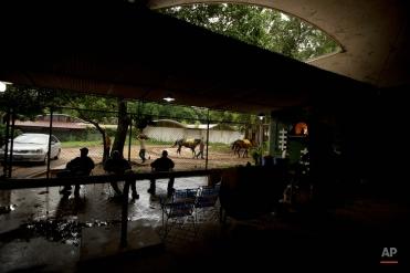 Venezuela Horse Mafia: Photographer Fernando Llano