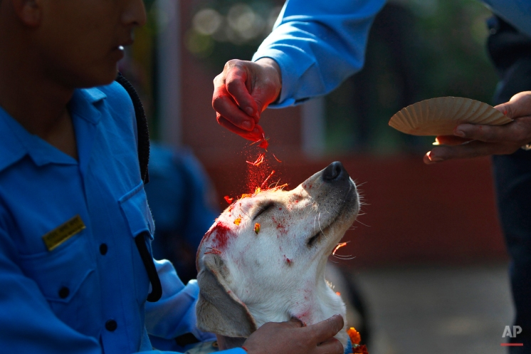 Photos of the Day: October 22, 2014