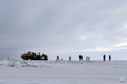 In this Oct. 7, 2014, photo, a whale is pushed onto a frozen metal landing strip for butchering in a field near Barrow, Alaska. The whales, which can reach sixty feet in length and weigh more than 100 tons, can take a Herculean effort to move, both at sea and on land. (AP Photo/Gregory Bull)