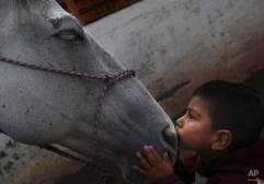 """In this Aug. 26, 2014 photo, 4-year-old patient Saul Valverde kisses Andariego, a 19-year-old veteran horse that retired from """"charreria,"""" the Mexican version of a rodeo, at a corral in southern Mexico City. Andariego now works as a therapy horse, helping children with special needs. In Mexico, the career of the charro horse usually runs about 10 to 12 years. (AP Photo/Marco Ugarte)"""