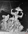 The chorus line at the Tropicana nightclub in Havana on February 6, 1956. (AP Photo)