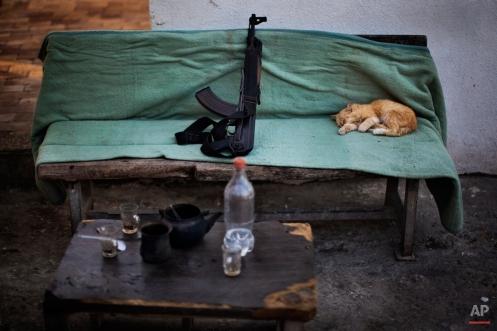 A cat sleeps next to a Kalashnikov weapon on a Hamas security check point in Gaza City, Tuesday, Oct. 30, 2012. (AP Photo/Bernat Armangue)