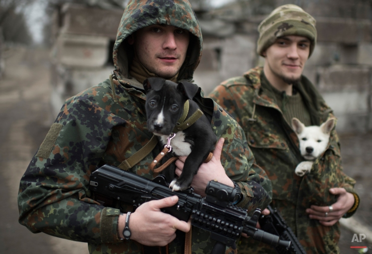 Ukrainian servicemen put their dogs under the jackets to keep them warm in Mariupol, Ukraine, Wednesday, Jan. 28, 2015. The military conflict between Russia-backed separatists and the government forces in eastern Ukraine has been raging since April, claiming more than 5,100 lives, according to the United Nations. (AP Photo/Evgeniy Maloletka)
