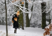 A woman walks in a snow covered park after snowfall in Minsk, Belarus, Friday, Jan. 23, 2015. Belarus capital was hit by a heavy snowfall on Friday morning, as temperatures remained below 0 degrees Celsius ( 32 Fahrenheit). (AP Photo/Sergei Grits)