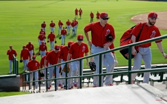 Los Angeles Angels players make their way to the practice fields for a spring training baseball workout, Monday, Feb. 23, 2015, in Tempe, Ariz. (AP Photo/Morry Gash)