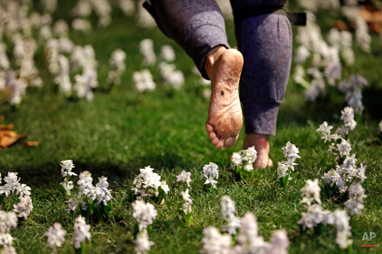 """A worker walks barefoot while preparing the Washington Park Arboretum's display garden for the Northwest Flower and Garden Show, Tuesday, Feb. 10, 2015, in Seattle. The 27th annual show, themed """"Romance Blossoms"""" this year, opens Wednesday with 23 display gardens, dozens of product exhibitors and more than 100 seminars. Highlights include ideas for urban farming and people living in condos and apartments. The show runs through Sunday. (AP Photo/Elaine Thompson)"""