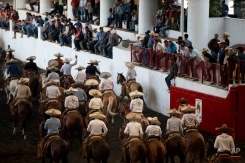 In this Feb. 26, 2015 photo, teams ride in procession out of the ring after the opening of a charreada in Mexico City. (AP Photo/Rebecca Blackwell)