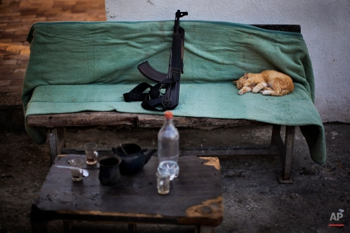 A cat sleeps next to a Kalashnikov weapon on a Hamas security check point in Gaza City, Oct. 30, 2012. (AP Photo/Bernat Armangue)