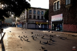 Birds eat bread crumbs on an empty street of the Skid Row area of Los Angeles on July 18, 2013. (AP Photo/Jae C. Hong)