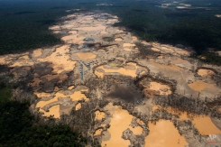 In this Nov. 11, 2014 aerial photo, a deforested area is shown dotted with blue tarps, marking the area where miners reside, and craters filled with water, caused by illegal gold mining activities, in La Pampa, in Peru's Madre de Dios region. In addition to contributing to deforestation, the illegal alluvial gold mining contaminates the jungle with tons of mercury. (AP Photo/Rodrigo Abd)