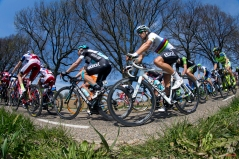 Race winner Michal Kwiatkowki, of Poland, center right, in rainbow jersey, rides in the pack near the village of Schin op Geul during the 50th edition of the Amstel Gold cycling race with the start in Maastricht and finish in Valkenburg, Netherlands, Sunday, April 19, 2015. (AP Photo/Peter Dejong)