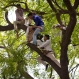 Volunteers of the Aam Admi Party try to rescue Gajendra Singh, who hung himself during a farmer's rally in New Delhi, India, Wednesday, April 22, 2015. According to a note he left behind and which police recovered, Singh killed himself after his father, left with nothing after rainstorms destroyed their crops, forced him from the family home. It was the latest in a wave of suicides that has left at least 40 farmers dead in recent weeks. (AP Photo/Saurabh Das)