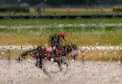 Rainwater coats the window of an observation tower as an exercise rider guides a horse around the main track at Belmont Park, Tuesday, June 2, 2015, in Elmont, N.Y. (AP Photo/Julie Jacobson)