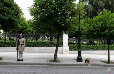 Greek Presidential Guard, Evzonas, stand guard as a stray dog sits on the sidewalk outside Presidential Palace in Athens, on Monday, June 8, 2015. German Chancellor Angela Merkel said at the Group of Seven summit in Germany on Monday that Greece needs to agree to take steps to straighten out its finances and economy, as it negotiates with other eurozone countries and the International Monetary Fund for more bailout loan money. (AP Photo/Thanassis Stavrakis)