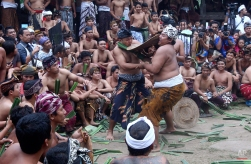 Balinese fighters combat with sticks wrapped in thorny pandanus leaves during a village festival ceremony in Bali, Indonesia, Monday, June 8, 2015. Once a year, during the ritual tournament festival, men of the village fight each other with wads of thorny pandanus leaves as part of a sacrifice to placate the evil spirits. (AP Photo/Firdia Lisnawati)