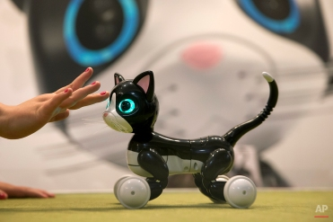 In this Saturday, June 6, 2015 photo, robot pet Zoomer Kitty is demonstrated at the CatConLA in Los Angeles. (AP Photo/Jae C. Hong)