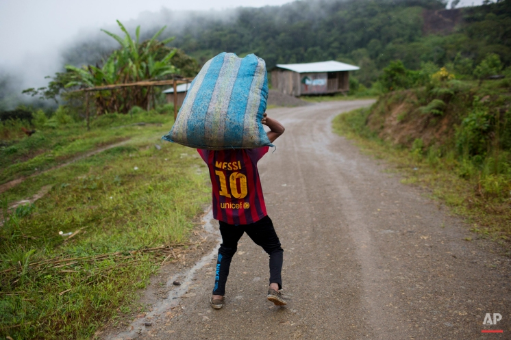 """In this March 16, 2015 photo, Jhorlis Huallpa, 17, carries tarpaulins to dry coca leaves after their harvest in La Mar, province of Ayacucho, Peru. Peru's cocaine trade is highly decentralized, run by scores of """"firms"""" of extended families. The backpackers they hire move in groups as small as four and as large as 70, say police, backpackers and local officials. (AP Photo/Rodrigo Abd)"""