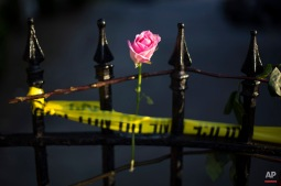 A rose is affixed to a fence along a sidewalk memorial in memory of the shooting victims in front of Emanuel AME Church, Saturday, June 20, 2015, in Charleston, S.C. (AP Photo/David Goldman)
