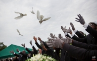 Pallbearers release doves over the casket of Ethel Lance during her burial service, the first one for the nine people killed in the shooting at Emanuel AME Church, Thursday, June 25, 2015, in Charleston, S.C. (AP Photo/David Goldman)