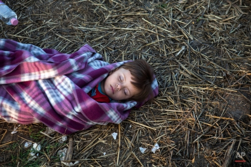 A Syrian boy sleeps at a checkpoint near the Hungarian town of Roszke on Thursday, Sept. 3, 2015 after crossing the border illegally from Serbia with his family. The 28-nation European Union has been at odds for months on how to deal with the influx of more than 332,000 migrants this year as Greece, Italy and Hungary have pleaded for more help. (AP Photo/Santi Palacios)