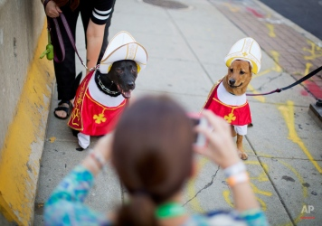 Bellatrix, left, and Addie, right, have their picture taken by pedestrians as they are walked outside the Pennsylvania Convention Center, host of the World Meeting of Families conference, Friday, Sept. 25, 2015, in Philadelphia. Pope Francis wraps up his U.S. visit this weekend in Philadelphia, where he speaks in front of Independence Hall and celebrates Mass on the Benjamin Franklin Parkway to close out a big rally on Catholic families. (AP Photo/David Goldman)