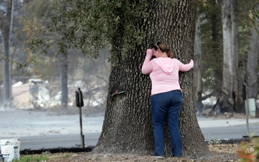 Deanna Hingst puts her arms on a massive tree and weeps outside the ashen remains of her family's home after finding the tree singed but apparently still healthy Monday, Sept. 14, 2015, in Middletown, Calif. Two of California's fastest-burning wildfires in decades overtook several Northern California towns, killing at least one person and destroying hundreds of homes and businesses and sending thousands of residents fleeing highways lined with buildings, guardrails and cars still in flames. (AP Photo/Elaine Thompson)