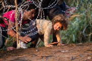 Refugees clamber through razor wire as they cross from Serbia to Hungary, in Roszke, Thursday, Aug. 27, 2015. (AP Photo/Darko Bandic)