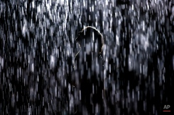 Katie Antonsson stands in Rain Room, an immersive installation by the London-based artist collective Random International, during a staff preview at the Los Angeles County Museum of Art (LACMA), Tuesday, Nov. 3, 2015, in Los Angeles. Utilizing 3-D motion sensor cameras, the artwork replicates the experience of continuous rainfall, but allows visitors to walk through falling water and seemingly do the impossible - pause the rain wherever a human body is detected. (AP Photo/Jae C. Hong)