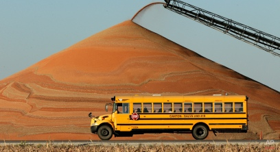 A school bus passes a pile of milo at a grain storage facility Tuesday, Nov. 10, 2015, near Canton, Kan. The crop is used mainly for feeding cattle and ethanol production. (AP Photo/Charlie Riedel)