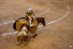 Bullfighter Curro Diaz performs with a bull during a bullfight at Las Ventas bullring in Madrid, Spain, Sunday, May 3, 2015. Bullfighting is a traditional spectacle in Spain and the season runs from March to October. (AP Photo/Andres Kudacki)