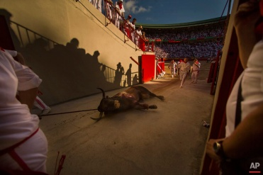 Workers carry a dead bull during a bullfight of the San Fermin festival in Pamplona, Spain, Tuesday, July 7, 2015. Revelers from around the world arrive in Pamplona every year to take part on some of the eight days of the running of the bulls.(AP Photo/Andres Kudacki)