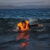 A migrant swims as he arrives on the island of Lesbos after crossing the Aegean sea from Turkey to Greece on an overcrowded inflatable boat , Tuesday, Oct. 27, 2015. (AP Photo/Santi Palacios)