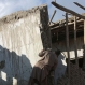 An Afghan man looks at a damaged house following a powerful earthquake today that could be felt across South Asia, in Kabul, Afghanistan, Monday, Oct. 26, 2015. The U.S. Geological Survey said the epicenter of the 7.5-magnitude earthquake was in the Hindu Kush mountains, in the sparsely populated province of Badakhshan, which borders Pakistan, Tajikistan and China. It said the epicenter was 213 kilometers (130 miles) deep and 73 kilometers (45 miles) south of the provincial capital, Fayzabad. (AP Photo/Rahmat Gul)