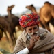 An Indian camel trader drinks tea at the annual cattle fair in Pushkar, in the western Indian state of Rajasthan, Saturday, Nov. 14, 2015. Pushkar is a popular Hindu pilgrimage spot that is also frequented by foreign tourists who come to the town for its annual cattle fair. (AP Photo/Deepak Sharma)
