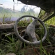 In this Monday, Nov. 16, 2015 photo, the wreckage of a van is overgrown by plants in Simacem village in North Sumatra, Indonesia. The village was abandoned following the eruption of Mount Sinabung as it was considered too close to the still rumbling volcano. (AP Photo/Binsar Bakkara)