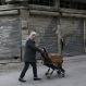 A woman pushes a stroller carrying a box in the old city of Homs, Syria on Monday, Dec. 7, 2015. Syrian authorities have released 35 opposition detainees in the central city, ahead of a deal that will lead to the departure of thousands of opposition fighters.The 35 were released Monday at the governor's office in this city that was one of the first to rise against the government. (AP Photo)