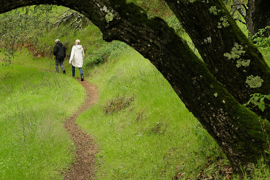 A Sip-and-Step Guide to Hiking the NapaValley
