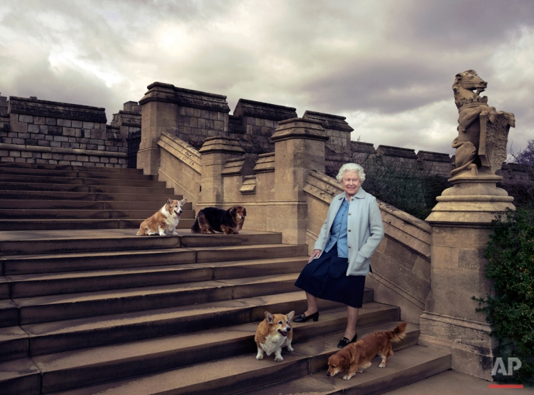 In this official photograph released by Buckingham Palace Wednesday April 20, 2016  to mark her 90th birthday, Queen Elizabeth II is seen walking in the private grounds of Windsor Castle, in England, on steps at the rear of the East Terrace and East Garden with four of her dogs: clockwise from top left Willow (corgi), Vulcan (dorgi), Candy (dorgi) and Holly (corgi). (© 2016 Annie Leibovitz   via  AP)