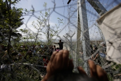 Migrants try to tear down part of border fence separating Greece with Macedonia, at the northern Greek border point of Idomeni, Greece, Thursday, April 7, 2016, during a protest against the closed border. When the migrants tried to tear down part of the fence, Macedonian police stepped in and stopped them. (AP Photo/Amel Emric)