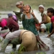 An Indian Bodo tribal woman shows her catch as they fish on the outskirts of Gauhati, north eastern Assam state, India, Monday, March 14, 2016. (AP Photo/ Anupam Nath)