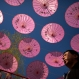 In this Thursday, March 24, 2016, photo, a man walks beneath rows of parasols at a public park in Beijing. Visitors have been coming to parks in China's capital city in increasing numbers as flowers and trees are beginning to bloom in an annual rite of spring. (AP Photo/Mark Schiefelbein)