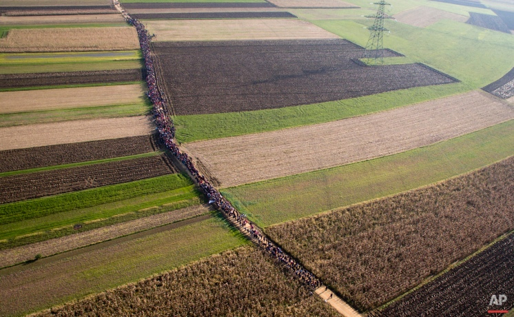 A column of migrants moves through fields after crossing from Croatia, in Rigonce, Slovenia, Sunday, Oct. 25, 2015. (AP Photo/Darko Bandic)