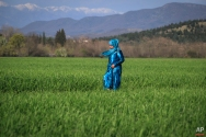 A migrant woman walks in a field at the northern Greek border point of Idomeni, Greece, Sunday, March 20, 2016. (AP Photo/Vadim Ghirda)