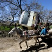 Afghan children travel on a donkey cart past the site of a roadside bomb explosion on the outskirts of Kabul, Afghanistan, Monday, April 11, 2016. An Afghan official says at least one person has been killed when a bomb ripped through a bus carrying education ministry employees to work in the capital, Kabul. (AP Photo/Rahmat Gul)