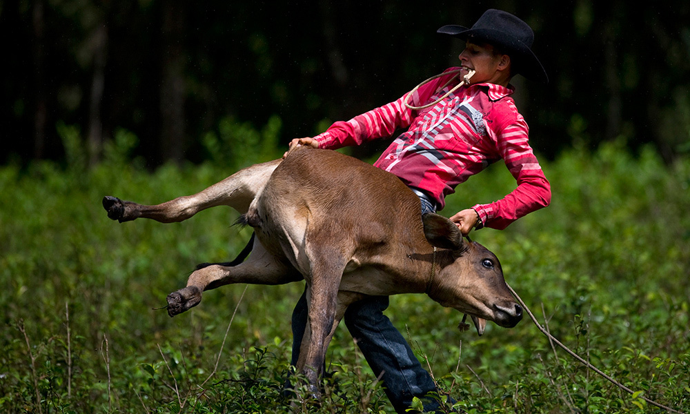 Cuban Cattle Country Keeps Up Rodeo Traditions