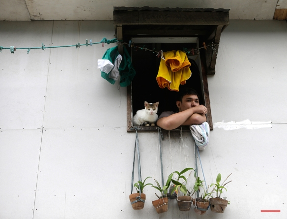 """A marooned resident peers from his upper floor window with his cat following flooding which was spawned by typhoon Sanba (local name """"Karen"""") Saturday Sept.15, 2012 at San Juan city, east of Manila, Philippines. (AP Photo/Bullit Marquez)"""