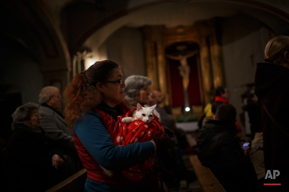 A woman holds her cat as worshipers attend a mass in the Saint Anton church in Madrid, Spain, Saturday, Jan. 17, 2015. It is the animal patron saints day in which thousands of people all over Spain bring their pets to churches to be blessed. (AP Photo/Daniel Ochoa de Olza)