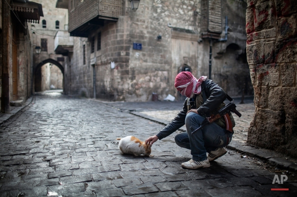 In this Sunday, Jan. 6, 2013 photo, a Free Syrian Army fighter, feeds a cat bread in the old city of Aleppo, Syria.  (AP Photo/Andoni Lubaki, File)